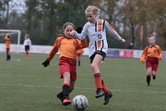 "HBC Voetbal • <a style=""font-size:0.8em;"" href=""http://www.flickr.com/photos/151401055@N04/49084071326/"" target=""_blank"">View on Flickr</a>"