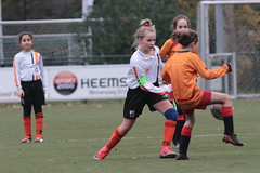 "HBC Voetbal • <a style=""font-size:0.8em;"" href=""http://www.flickr.com/photos/151401055@N04/49084071706/"" target=""_blank"">View on Flickr</a>"