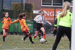 "HBC Voetbal • <a style=""font-size:0.8em;"" href=""http://www.flickr.com/photos/151401055@N04/49084074566/"" target=""_blank"">View on Flickr</a>"
