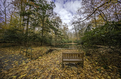 Happy Bench Monday! (JMS2) Tags: park outdoor scenic bench monday autumn leaves forest serene
