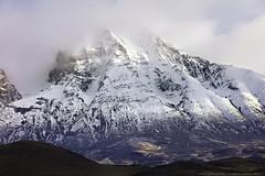 Le paradis / Guanacos paradise valley (Simon Théberge) Tags: montagnes mountains