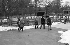 Onwards (Alex Luyckx) Tags: toronto ontario canada thedonvalley riverdale metro urban city riverdalefarm oldcabbagetown ttc torontofilmshootersmeetup tfsm torontofilmshooters photowalk outing socal walk nikon nikonfe fe slr 135 35mm aisnikkor35mm128 yellow12 harmantechnologies ilfordphoto ilford ilforddelta400 delta400 delta asa200 kodak d76 kodakd76 11 nikoncoolscanved adobephotoshopcc bw blackwhite film filmphotography believeinfilm filmisalive filmisnotdead