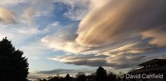 November 15, 2019 - Stunning lenticular clouds. (David Canfield)