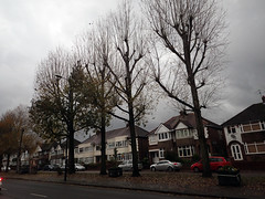 2019_11_150012 (Gwydion M. Williams) Tags: coventry britain greatbritain uk england warwickshire westmidlands