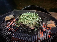 2019 321/365 11/17/2019 SUNDAY - Rosemary Encased Beef Roast - On The Grill (_BuBBy_) Tags: beef sunday encased roast grill rosemary on the 2019 321365 11172019 sun project 321 11 17 su 365 project365 365days wood apple ground whole charcoal steak heat grilling weber seasoning indirect texjoy november
