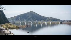_DSC5952 (kblover24) Tags: sony a7r mk3 a7r3 a7riii riii fe 85 85mm f14 f14gm gm 名古屋 nagoya 犬山城