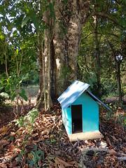 Spirit House on the farm (SierraSunrise) Tags: thailand isaan esarn nongkhai phonphisai religion buddhism spirithouse blue