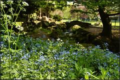 Photo of Beddington park....