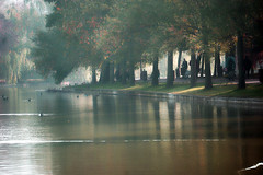 Dimineața în parc (Dumby) Tags: landscape bucurești românia sector3 ior titan lake park autumn morning fall