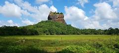 Sigiriya rock, Sri Lanka (Meino NL) Tags: citadelvansigiriya sigiriya srilanka werelderfgoedlijst leeuwenrots sigiriyarock