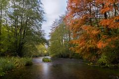 Les pieds dans l'eau (autainvillois) Tags: rivière automne pose longue filé conie moléans