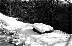 Essalois sous la neige      Zorki 1D  sERENAR 35MM   (30) (Bokey Shutter) Tags: zorki1d jupiter8 noirblanc loire