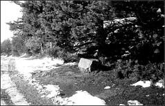 Essalois sous la neige      Zorki 1D  sERENAR 35MM   (29) (Bokey Shutter) Tags: zorki1d jupiter8 noirblanc loire