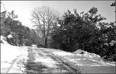 Essalois sous la neige      Zorki 1D  sERENAR 35MM   (15) (Bokey Shutter) Tags: zorki1d jupiter8 noirblanc loire