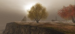 Autumn Chill (alannasubgirl) Tags: secondlife sl fall rain fog tree clowds cliff chill alanna authorspoint autumn