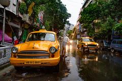"Colours of Kolkatta (Karunyaraj) Tags: kolkatta colourfulstreet ""coloursofkolkatta"" yellow cabs cab morning earlymorning dawn rain monsoon monsoonstories westbengal nikon24120 nikond610 cwc cwc742"