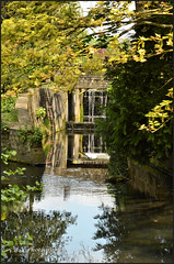 Photo of Beddington park..