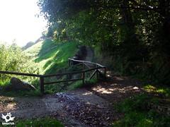 Stage 4 Tineo-Pola de Allande Primitive Way (asanza23n) Tags: primitive way saint james the pilgrim pilgrims principado de asturias camino santiago primitivo