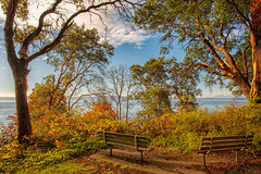 Peaceful Benches (KPortin) Tags: lincolnpark hbm benches autumn trees pugetsound