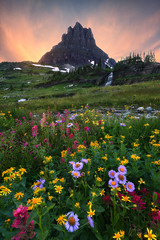 Gardens of the High Castle (Willie Huang Photo) Tags: mountains landscape waterfall nationalpark montana meadows glacier alpine wildflowers glaciernationalpark cascade loganpass clementsmountain nature scenic