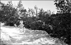 Essalois sous la neige      Zorki 1D  sERENAR 35MM   (14) (Bokey Shutter) Tags: zorki1d jupiter8 noirblanc loire