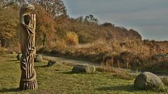 Hagedis kijkt over het 'Noordse Veld' bij Zeijen (Dr) (henkmulder887) Tags: noordseveld neanderthalers zeijen sbb heide kunst hagedis peest drenthe holland november herfst geel bruin staatsbosbeheer bezoekerscentrum hunebed hunebedd5