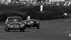 Goodwood Revival (Bernie Condon) Tags: cars racingcars race track goodwood goodwoodrevival vintage preserved british uk greatbritain sussex