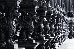 Lions (Fairy_Nuff (piczology.com)) Tags: venice welshot chiesa di san giorgio maggiore lions