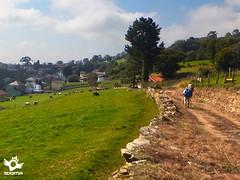 Stage 3 Salas-Tineo Primitive Way (asanza23n) Tags: primitive way saint james the pilgrim pilgrims principado de asturias camino santiago primitivo