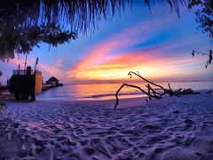 Memories of paradise ........ Maldivian pleasures (jeromedelaunay) Tags: dusitthani dusit luxuryresort luxurylifestyle luxe luxury hotel resort sand sunsetlovers reef naturelovers naturephotography nature indianocean indian ocean sea clouds sky sun sunset beach maldivesisland asia island maldivian maldives