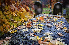 Death Bed (drei88) Tags: eternity life death mortal moment energy loss memories desolate cold windswept bereft solitude vigil memorial boundary autumn rain searching witness atmosphere grim stark grave bleak drab forlorn monolith stone hard rainyday mood gloom