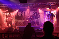 Tortharry 11