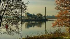 JULIANA - Ruhetag auf der Maas (Babaou) Tags: niederlande nederland limburgnoord noordbrabant ooijen bergen maas sand grind schiff november herbst spiegelung dxopl eos90d maasduinen
