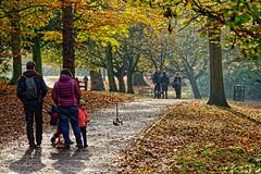 Sunday Morning (Croydon Clicker) Tags: family people scooter stroll park trees leaves autumn fall sunshine footpath kelseypark beckenham kent london nikon sigma