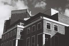 Earlsfort Terrace, Dublin (Mark Carmody) Tags: analoguephotography analog analogue film filmisnotdead filmphotography filmisalive f washi filmwashi filmwashid aerospace canon canona1 takumar supertakumar55mmf18 blackandwhite portraits streetscape landscape