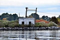 Sub-Station? (donnacurrall) Tags: powerlines powerstation concretebuilding abandoned rundown empty ospreynest autumncolor trees river reflections