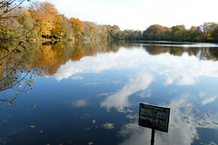 Slaugham Angling Club (Adam Swaine) Tags: sussex autumn autumncolours autumnviews countryside counties adamswaine 2019 trees lakes beautiful county rural waterside walks water westsussex sussexlandscape britain british country uk ukcounties reflections seasons