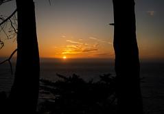 _DSC6560 (Autran Raphaël) Tags: sunset oceanview pacificcoasthigway