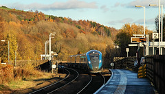 Photo of TPE 802 In Autumn Colours.