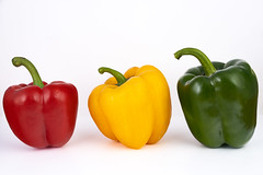 Tres pimientos  181119-9802 (Eduardo Estéllez) Tags: eduardoestellez peppers stilllife vegetarianism naturalproduct multicolored delicious primary stylish stilllifefood eating frontview bright mediterranean health closeup vegetables agriculture fresh background food ingredient green red freshness yellow color pepper colorful sweet healthy natural organic vegetarian vegetable isolated raw diet cooking bell group kitchen three ripe tasty nutrition orange