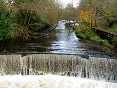 River Dane Weir (philept1) Tags: water woodland waterfall river outdoors peakdistrict autumn staffordshire valley view nationalpark weir cheshire