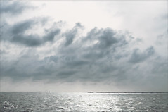 First View of Land (Digital Lady Syd) Tags: thebahamas theouterbanks theabacos gulfstream sailing atlanticocean clouds