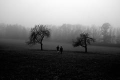 T ii T (stefankamert) Tags: between people landscapes trees fog foggy stefankamert ricoh gr griii noiretblanc noir blackandwhite blackwhite bw wideangle grain landscape