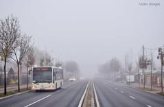 Mercedes-Benz Citaro Euro 3 - 4577 - R476 - 16.11.2019 (2) (VictorSZi) Tags: romania bus autobuz mercedes mercedescitaro mercedesbenz mercedescitaroeuro3 mercedesbenzcitaroeuro3 floreasca stb transport publictransport autumn toamna nikon nikond5300