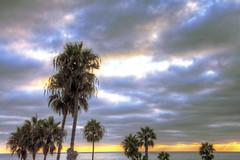 O'Side Sunset 20-9-20-19 (rod1691) Tags: california united states nature beauty usa tropical paradise sunrise palm trees outdoor landscape seascape walkabout sunset photography travel beach sand sun pier strand canon40506070d walknshoot