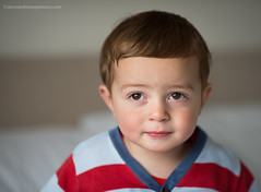 Beautiful Brown Eyes (Steven Robinson Pictures) Tags: boy cute model home portrait nikond800 nikon85mmf14d nikon shallowdepthoffield bokeh child innocence domesticlife indoors stare eyes browneyes toddler