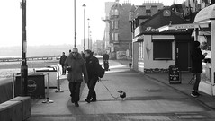 Cold Morning by the Coast 01 (byronv2) Tags: edinburgh edimbourg scotland peoplewatching candid street beach coast coastal portobello winter cold frost firthofforth forth river riverforth rnbforth rnbfirthofforth sea northsea blackandwhite blackwhite bw monochrome promenade cafe coffeekiosk coffee crumbs crumbsofportobello