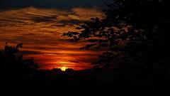 July Sunset. (Tim @ Photovisions) Tags: xe1 sun fuji clouds fujifilm sunset tree silhouette nebraska gagecounty
