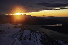 Rigi - Schwyz - Schweiz (Felina Photography - www.mountainphotography.eu) Tags: rigi sunset tramonto sonnenuntergang kulm schwyz switzerland schweiz svizzera zonsondergang zwitserland suisse svizra felinafoto mountainphotography mountain photography wwwmountainphotographyeu felina schnee snow sneeuw neve neige