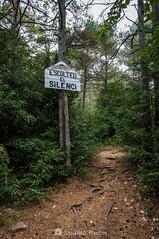 Consejo (SantiMB.Photos) Tags: 2blog 2tumblr 2ig lamussara vilaplana tarragona verano summer baixcamp bosque forest way path sendero lafebro cataluna españa